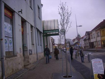 FOTKA - Výstava v Lysé nad Labem