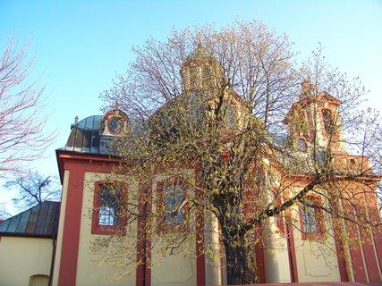 FOTKA - Kostel Kunratice s květoucím kaštanem...