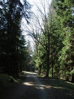 FOTKA - Šumava - Stožec