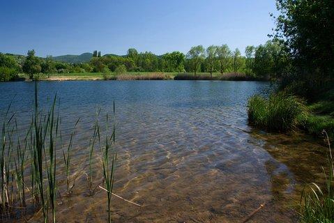 FOTKA - Jaro u rybníka