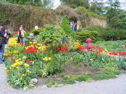 FOTKA - Zahrada v květu Petřín
