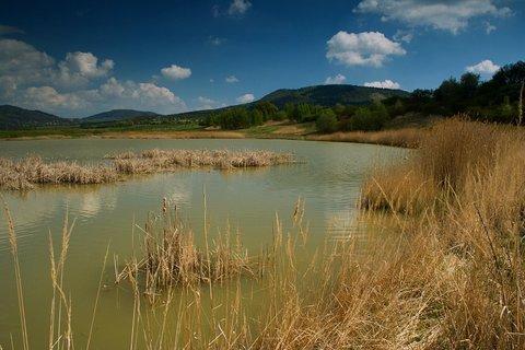 FOTKA - U špinavé vody