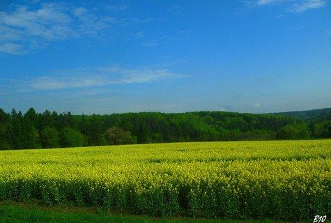 FOTKA - krajina okolí Jeseníků