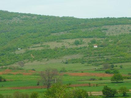FOTKA - příroda v Srbsku chybí mně tu lesy co jsou u nás