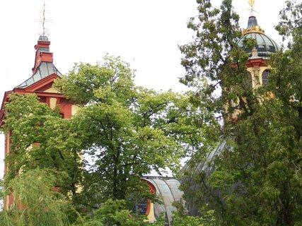 FOTKA - zarostlý kostel v Kunraticích ..