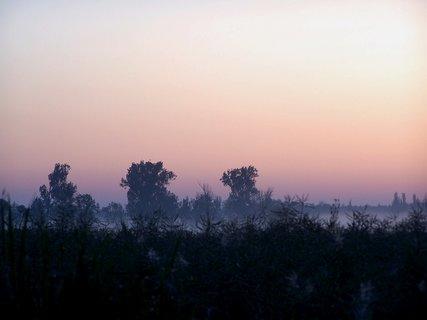 FOTKA - Dnešní svítání 5.6.2010