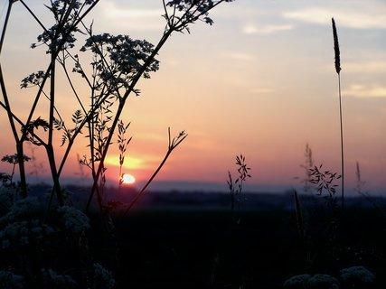 FOTKA - Červnové svítání