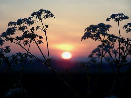 FOTKA - Tak sluníčko vstává