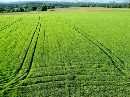 FOTKA - Pohled z rozhledny do polí