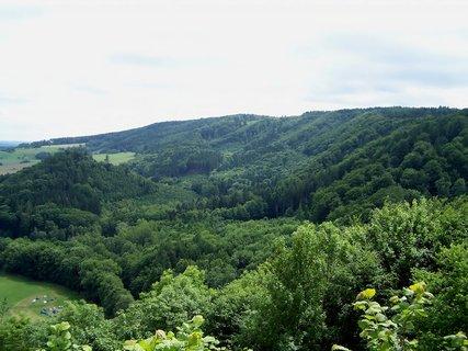 FOTKA - Lesy u Potštejna