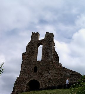 FOTKA - Trosky hradu Potštejn.