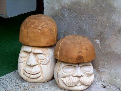 FOTKA - Zámecké houby-Potštejn