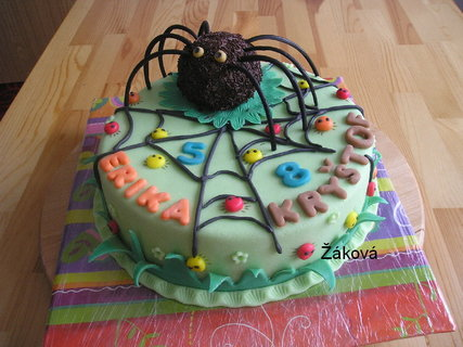 FOTKA - dort s pavoukem