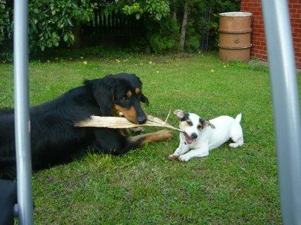 FOTKA - Kdo si hraje, nezlobí :-)