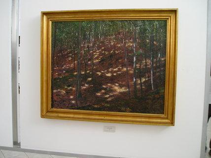 FOTKA - obraz v galerii