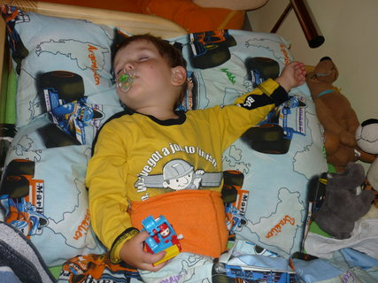 FOTKA - Malej Borek spi s Bagrem...:-D