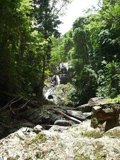 FOTKA - vodopady v destnem pralese