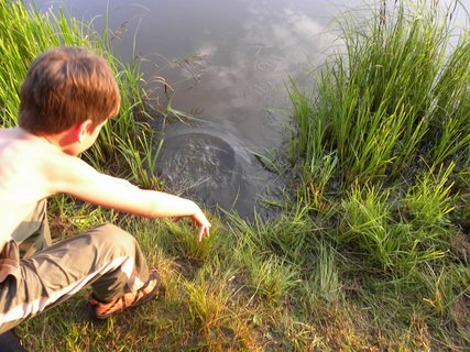 FOTKA - pouštím rybičku zpátky do vody