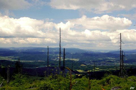 FOTKA - v oblacích 1