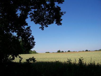 FOTKA - krajina ...1