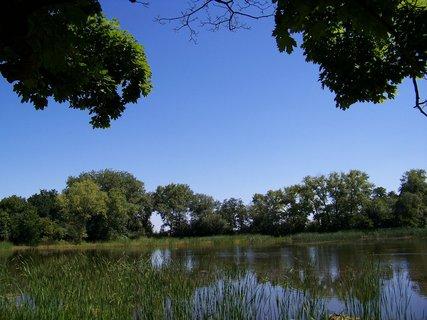 FOTKA - ,.,.rybník..,.,.,.