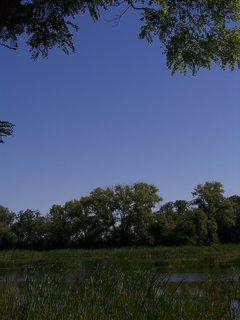 FOTKA - ,,rybník.,.............