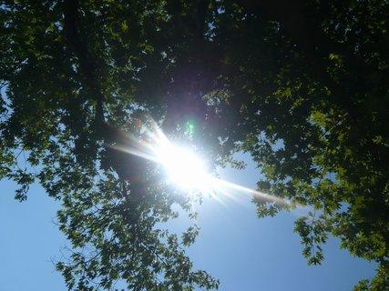 FOTKA - sluníčko,