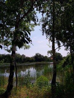 FOTKA - cestou na kole - u rybníka