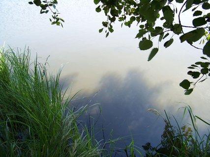 FOTKA - cestou na kole - břeh rybníka