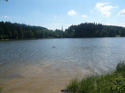 FOTKA - na Domanínském rybníku........
