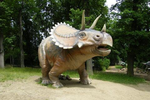 FOTKA - Triceratops 1
