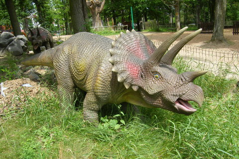 FOTKA - Triceratops 2