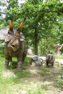 FOTKA - Triceratops 3