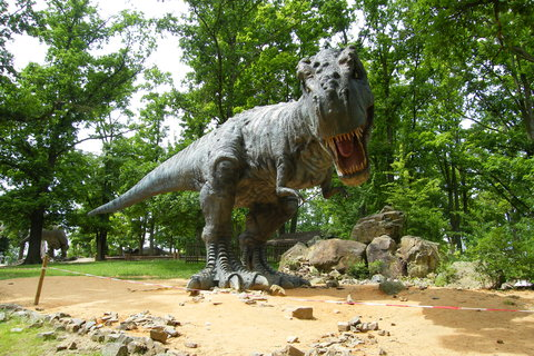 FOTKA - Tyrannosaurus Rex