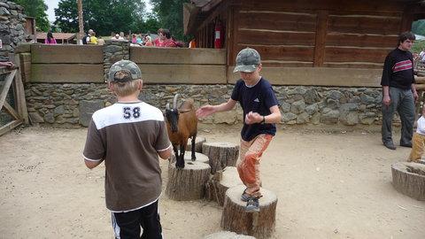 FOTKA - pozor brácho koza!