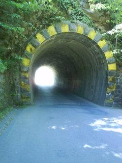FOTKA - tunel pod zříceninou Vlidštejn.