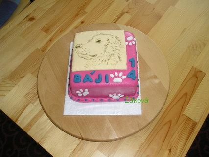 FOTKA - 2.dort s pejskem