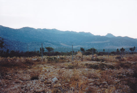 FOTKA - Cestou do Pakoštane