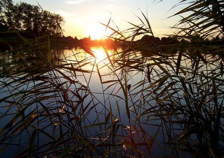 FOTKA - Západ slunce u rybníka