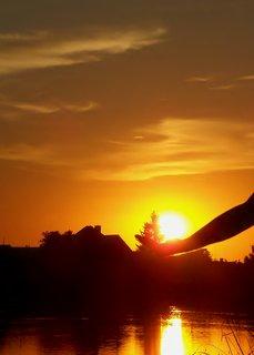 FOTKA - Slunce v dlani