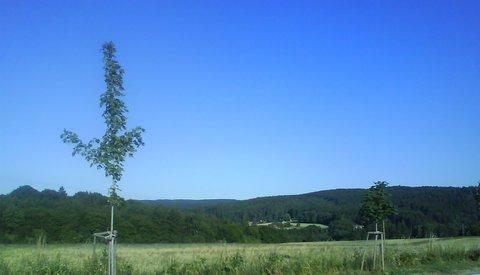 FOTKA - krajina kolem přehrady Seč