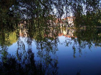FOTKA - Buštěhrad_kroucené vrby