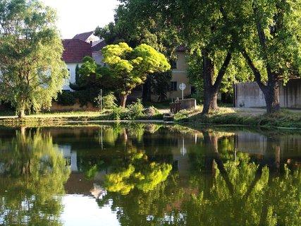 FOTKA - Buštěhrad_odrazy stromů na hladině