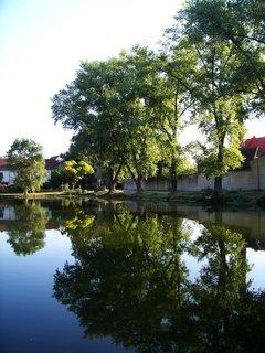FOTKA - Buštěhrad_hladina rybníka