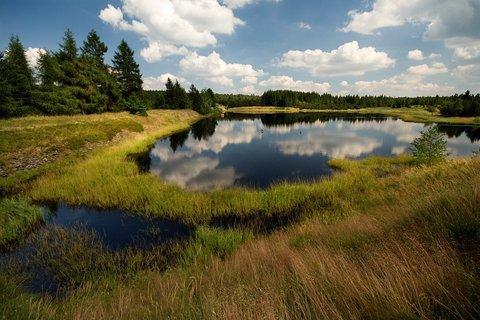 FOTKA - Volárenský rybník