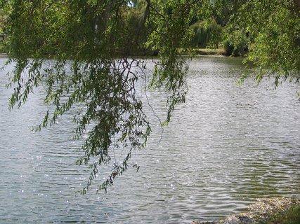 FOTKA - slunce a vlnky na rybníku _ Buštěhrad