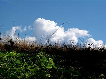 FOTKA - Léto jak má být....