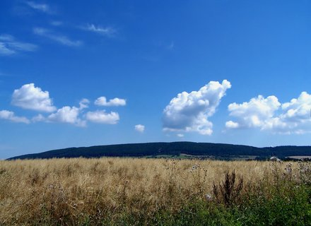 FOTKA - Pr�zdninov� po�as�