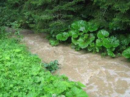 FOTKA - potok po bouřce2