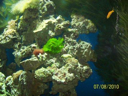 FOTKA - akvárium v zoo 3